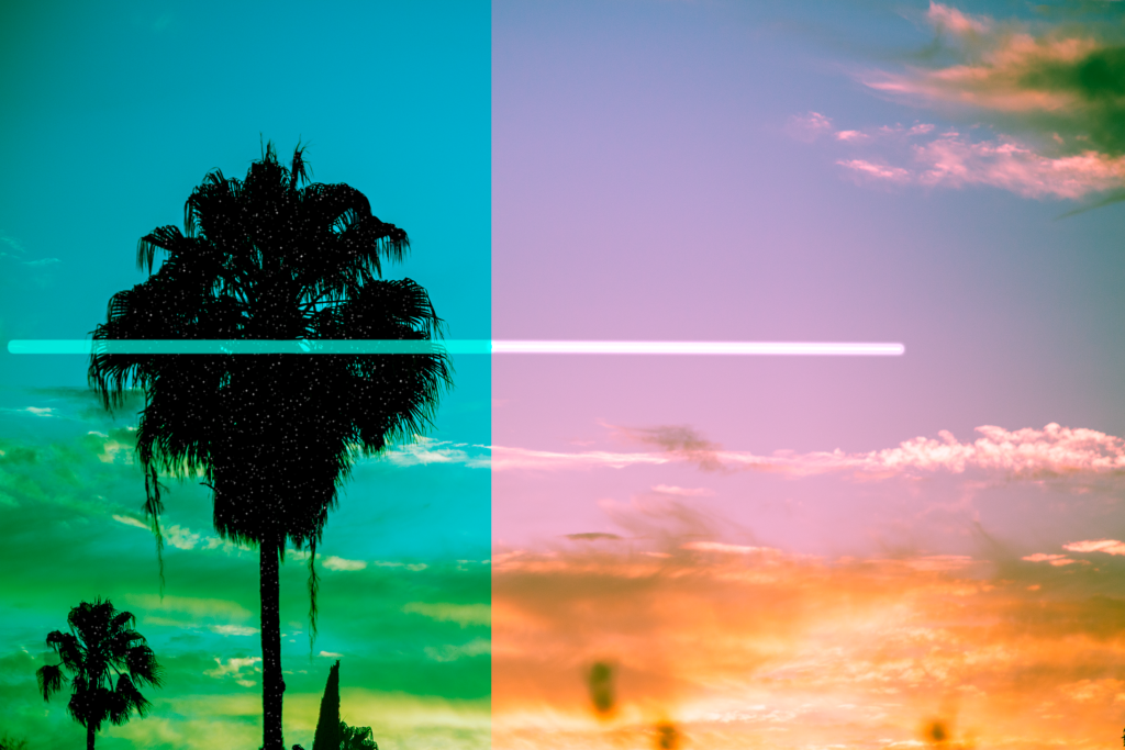 Palmtree and sunset with purple and green filters